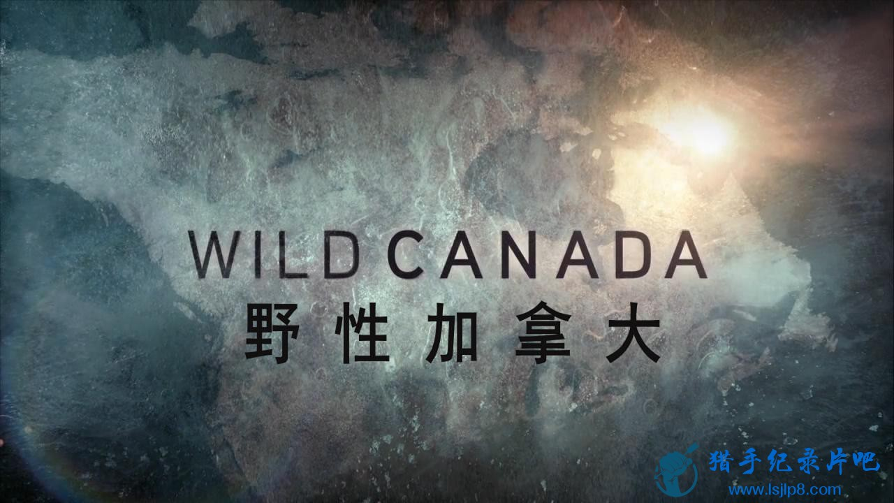 Wild.Canada.1of5.The.Eternal.Frontier.720p.HDTV.x264.AAC.MVGroup.org_20180425165312.JPG