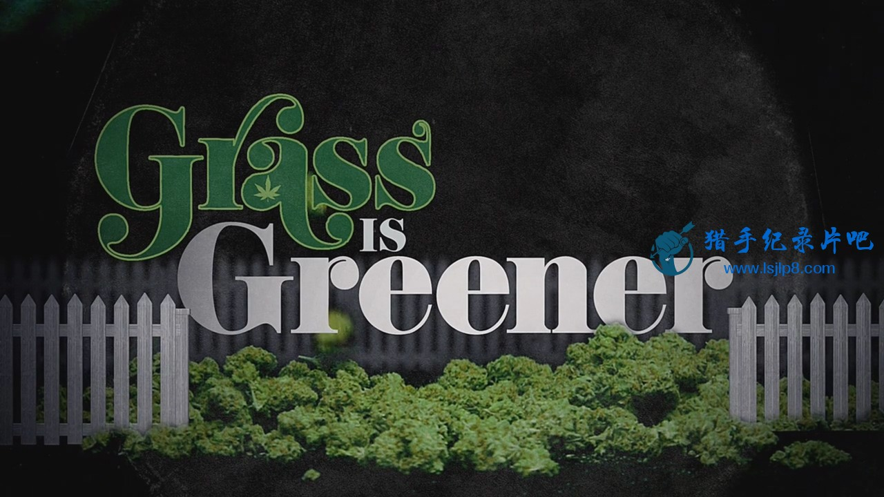 Grass.Is.Greener.2019.720p.NF.WEB-DL.DD 5.1.x264-QOQ.mkv_20200312_114348.205.jpg
