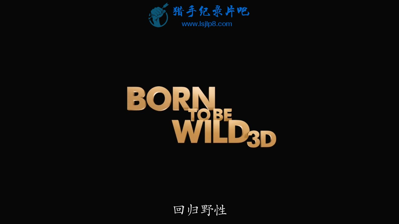 [回归野性].IMAX.Born.to.Be.Wild.2011.BluRay.720p.x264.AC3-CMCT.mkv_20200508_120745.201.jpg