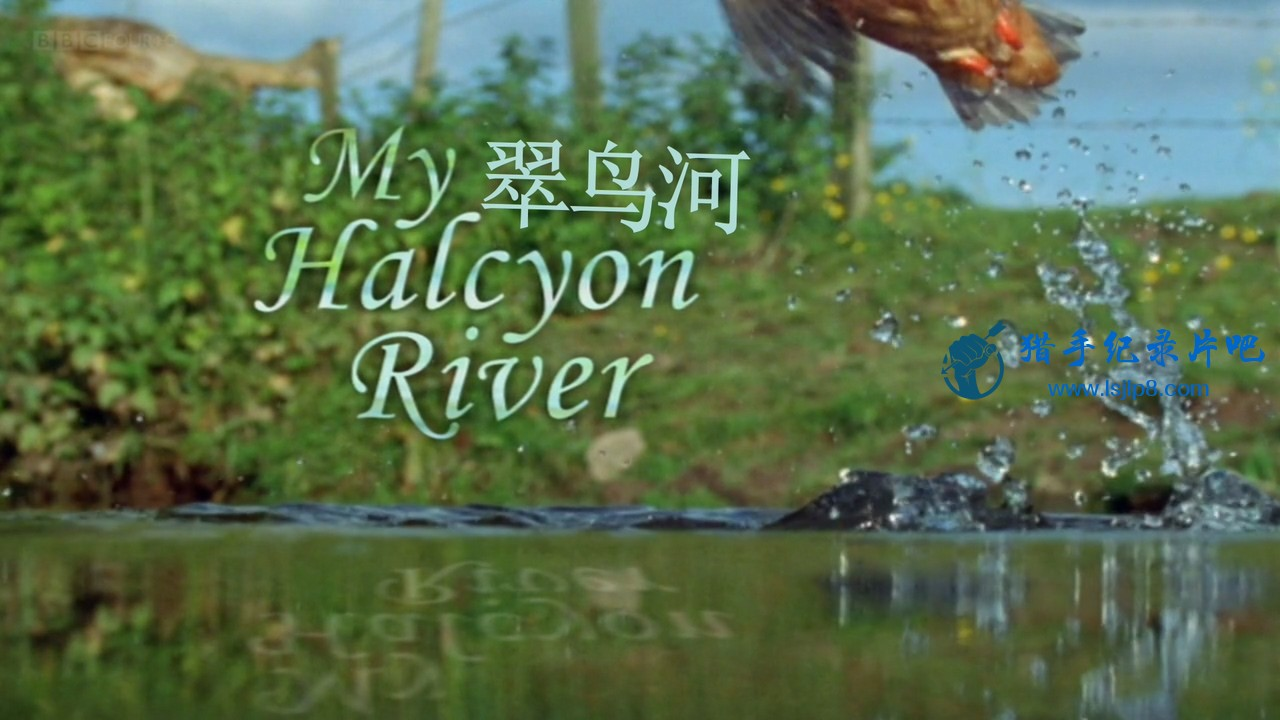 BBC.Natural.World.2002.My.Halcyon.River.720p.HDTV.x264.AAC.MVGroup.org.mkv_20200.jpg