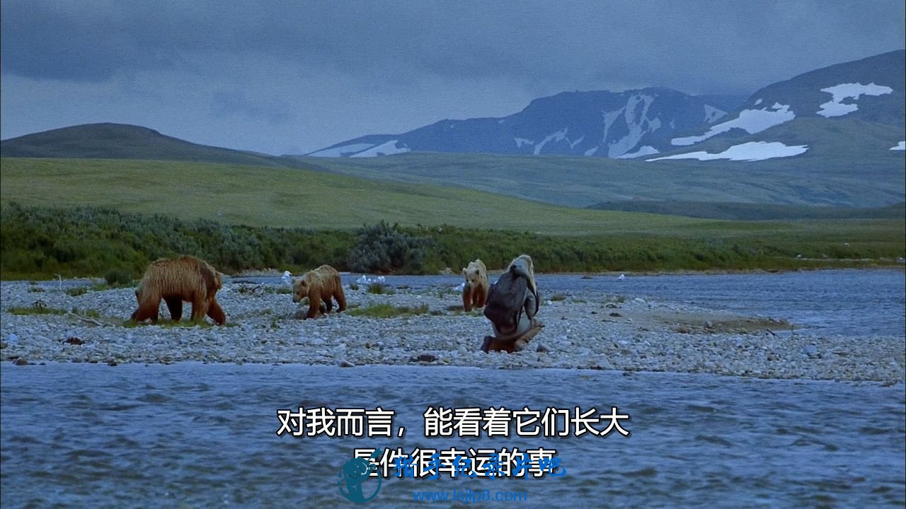 chd-imax-bears-ac3-bdrip.mkv_20200630_101053.300_看图王.jpg
