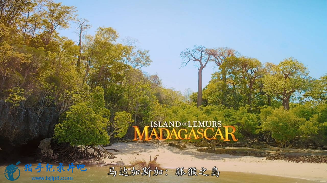[马达加斯加:狐猴之岛].Island.Of.Lemurs.Madagascar.2014.BluRay.720p.x264.AC3-CMC.jpg